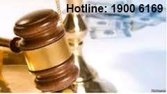 Chế định miễn hình phạt trong pháp luật hình sự Việt Nam