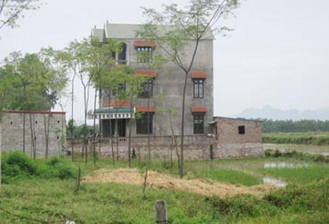 Cấp GCN quyền sử dụng đất đối với trường hợp vi phạm luật Đất đai