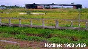 Bồi thường thiệt hại về tài sản, sản xuất kinh doanh khi NN thu hồi đất