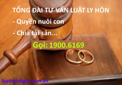 Mẫu đơn xin ly hôn