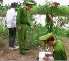 Tội trồng cây thuốc phiện hoặc các loại cây khác có chứa chất ma tuý