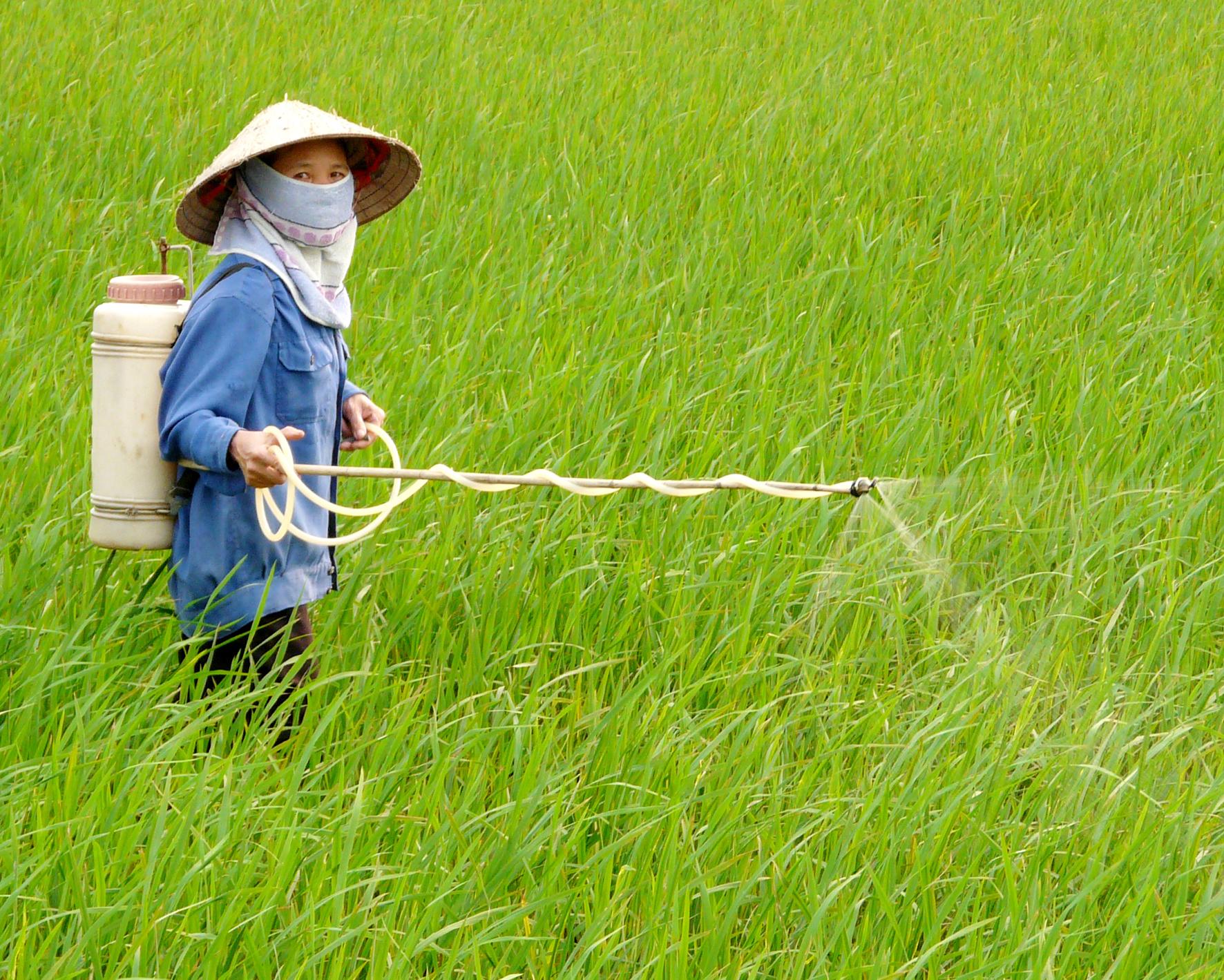 Tội sản xuất buôn bán hàng giả là thức ăn dùng để chăn nuôi-phân bón-thuốc thú y-thuốc bảo vệ thực vật