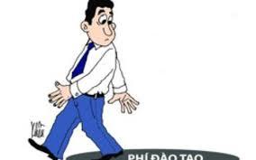 Tư vấn về bồi thường chi phí đào tạo đối với viên chức