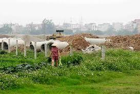Mẫu Đơn xin chuyển hình thức thuê đất sang giao đất có thu tiền sử dụng đất