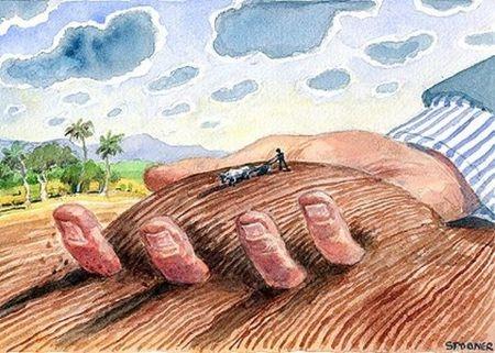 Trình tự thủ tục cho phép chuyển mục đích sử dụng đất thế nào?
