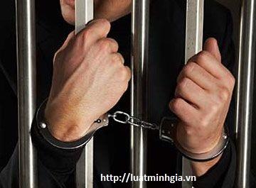 Tội truy cứu trách nhiệm hình sự người không có tội