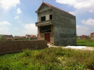 Xây dựng nhà trái phép trên đất trồng cây lâu năm có bị buộc phá dỡ?