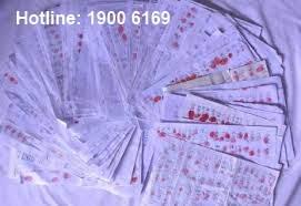 Thủ tục chứng thực điểm chỉ (trong giấy tờ, văn bản Tiếng Việt)
