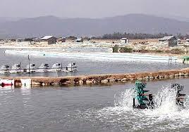 Đăng ký ngành nghề kinh doanh nuôi trồng thủy sản