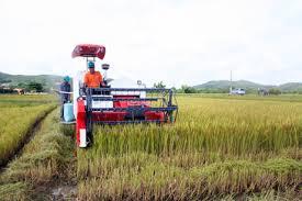 Tư vấn đăng ký kinh doanh Dịch vụ nông nghiệp