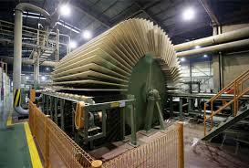 Đăng ký kinh doanh ngành nghề chế biến gỗ, tre, nứa thế nào?