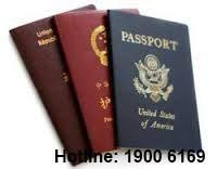 Thủ tục thôi quốc tịch Việt Nam