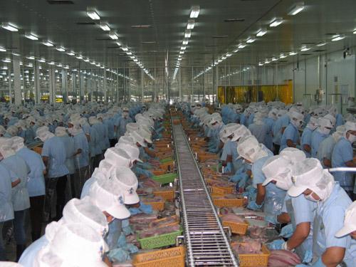 Tư vấn đăng ký ngành nghề sản xuất chế biến thực phẩm