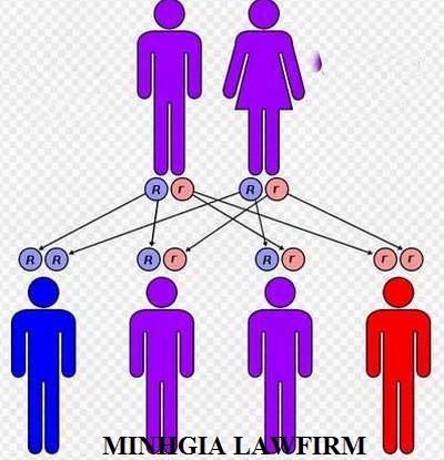 Luật sư tư vấn cách xác định quan hệ họ hàng trong phạm vi 3 đời