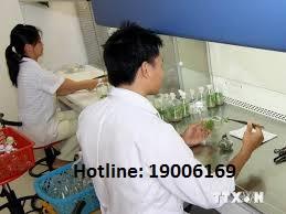 Mức hưởng phụ cấp ưu đãi trong các cơ sở y tế công lập