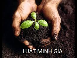 Trình tự, thủ tục chuyển mục đích sử dụng đất lên đất thổ cư
