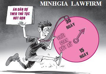 Khiếu nại hành vi hành chính của chính quyền địa phương