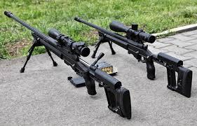 Sử dụng súng để bắn chim có phải đi tù?