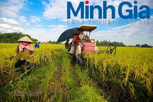 Tiền thuế sử dụng đất nông nghiệp