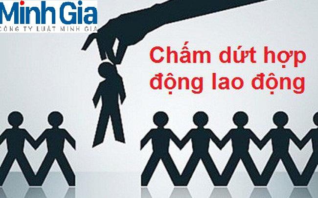Tư vấn về người lao động đơn phương chấm dứt hợp đồng đúng pháp luật