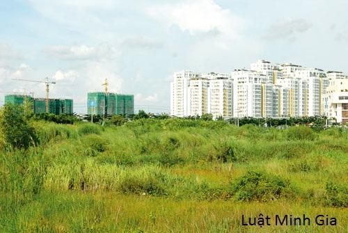 Tư vấn về vấn đề cho thuê quyền sử dụng đất.