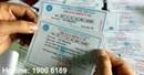 Tư vấn về trách nhiệm của công ty với việc nộp Bảo Hiểm Y Tế cho nhân viên