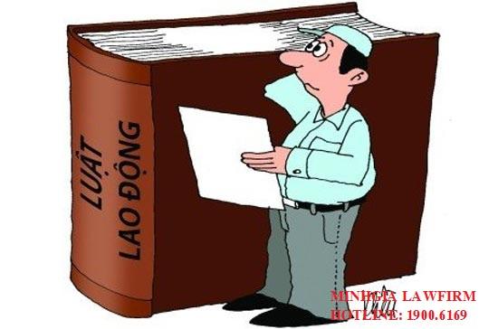 Căn cứ xử lí kỷ luật người lao động được quy định ở đâu?