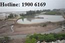 Tư vấn về thủ tục, lệ phí chuyển mục đích sử dụng đất