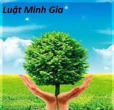 Kế hoạch quản lý môi trường và thủ tục tham vấn đối với dự án đầu tư tại Việt Nam