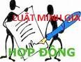 Chấm dứt hợp đồng lao động trong trường hợp sáp nhập công ty