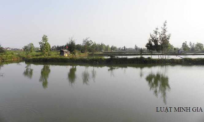 Hỏi về thu hồi diện tích đất nuôi trồng thủy sản