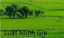 Thủ tục tặng cho quyền sử dụng đất và đề nghị cấp giấy chứng nhận quyền sử dụng đất