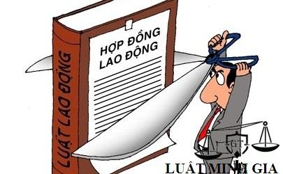 Trường hợp đơn phương chấm dứt hợp đồng lao động