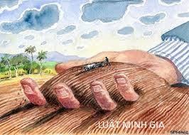 Điều kiện về bồi thường về nhà ở trên đất khi nhà nước thu hồi đất