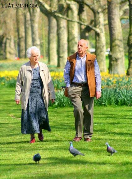 Hỏi về trường hợp nghỉ hưu trước tuổi có tháng lẻ bị trừ tỷ lệ phần trăm như thế nào