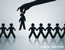 Tư vấn về xử lý kỉ luật người lao động