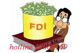 Doanh nghiệp nước ngoài đầu tư vào Việt Nam được cấp giấy phép gì?