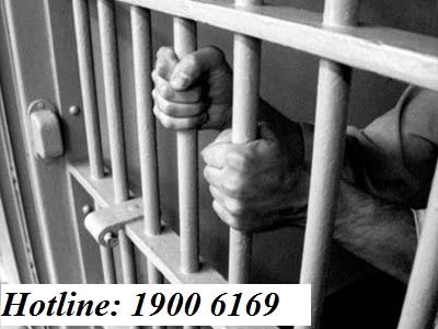 Hỏi về việc tố giác tội phạm theo quy định của pháp luật
