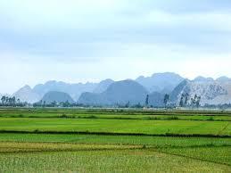 Tư vấn đất đai: Tranh chấp mua bán đất nông nghiệp sau 20 năm