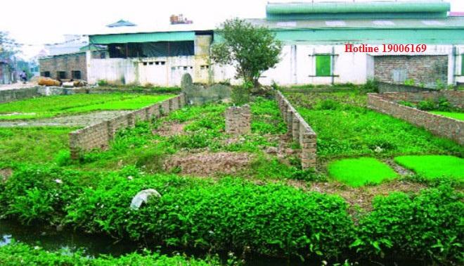 Thủ tục chuyển mục đích sử dụng đất sang đất thổ cư tại Đồng Nai.