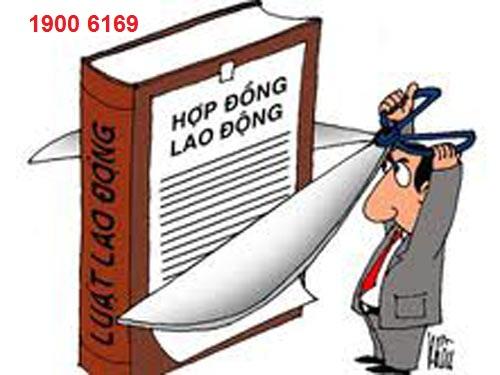 Quy định của pháp luật về hợp đồng lao động ?