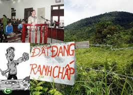 Thủ tục giải quyết việc cấp sai Giấy chứng nhận quyền sử dụng đất