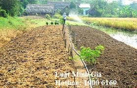 Tư vấn về tiền chuyển mục đích sử dụng đất từ đất vườn sang đất thổ cư