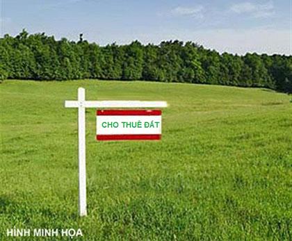 Tư vấn thuê đất nông nghiệp và thu hồi đất có đền bù