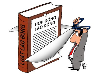 Image result for luật lao động