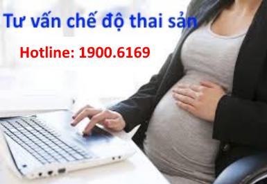 Tư vấn chế độ bảo hiểm thai sản, hưởng thai sản trực tuyến