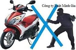 Tư vấn trường hợp việc tiêu thụ xe là tài sản trộm cắp
