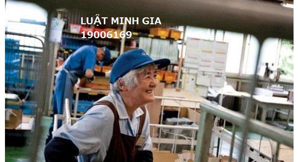 Tư vấn về rút ngắn thời giờ làm việc cho người lao động cao tuổi