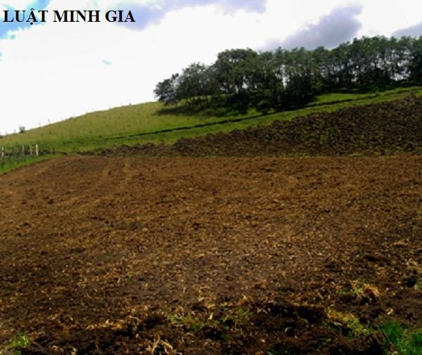 Tư vấn pháp luật đất đai về mua bán nhà đất