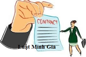 Quyền lợi người lao động được hưởng khi bị đơn phương chấm dứt hợp đồng lao động